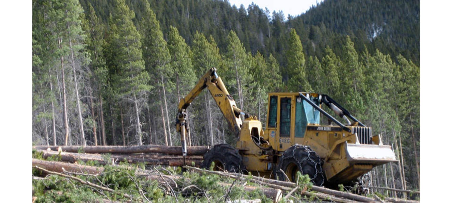ForestryMulcher